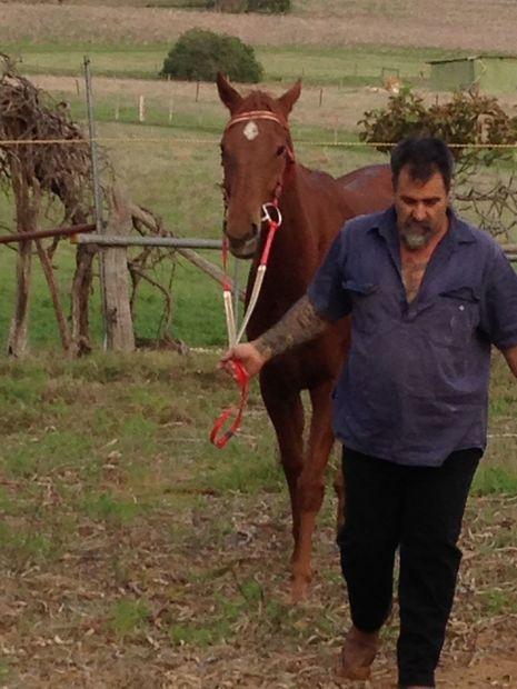 australijskie muzu艂ma艅skie strony randkowe